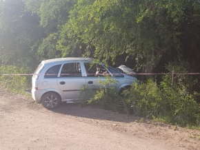 0_accidente-arbol-meriva.jpg